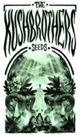 Kush Brothers Seeds