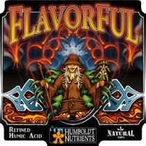 FlavorFul