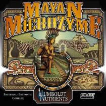 Mayan Microzyme