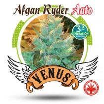 Venus Genetics - Afgan Ryder Auto (3f)